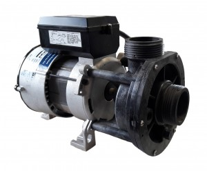 115 Volt; 1 Speed, 1 HP Spa Pump for Dream Star